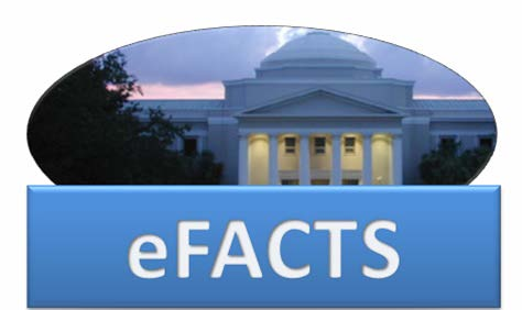 graphic representing efacts